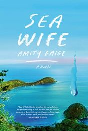 Sea Wife by Amity Gaige (cover) Image: a quiet lagoon