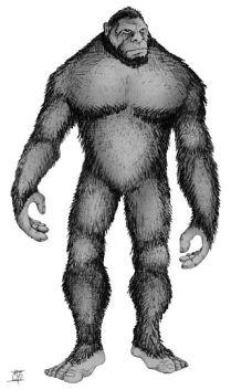 A drawing of Bigfoot