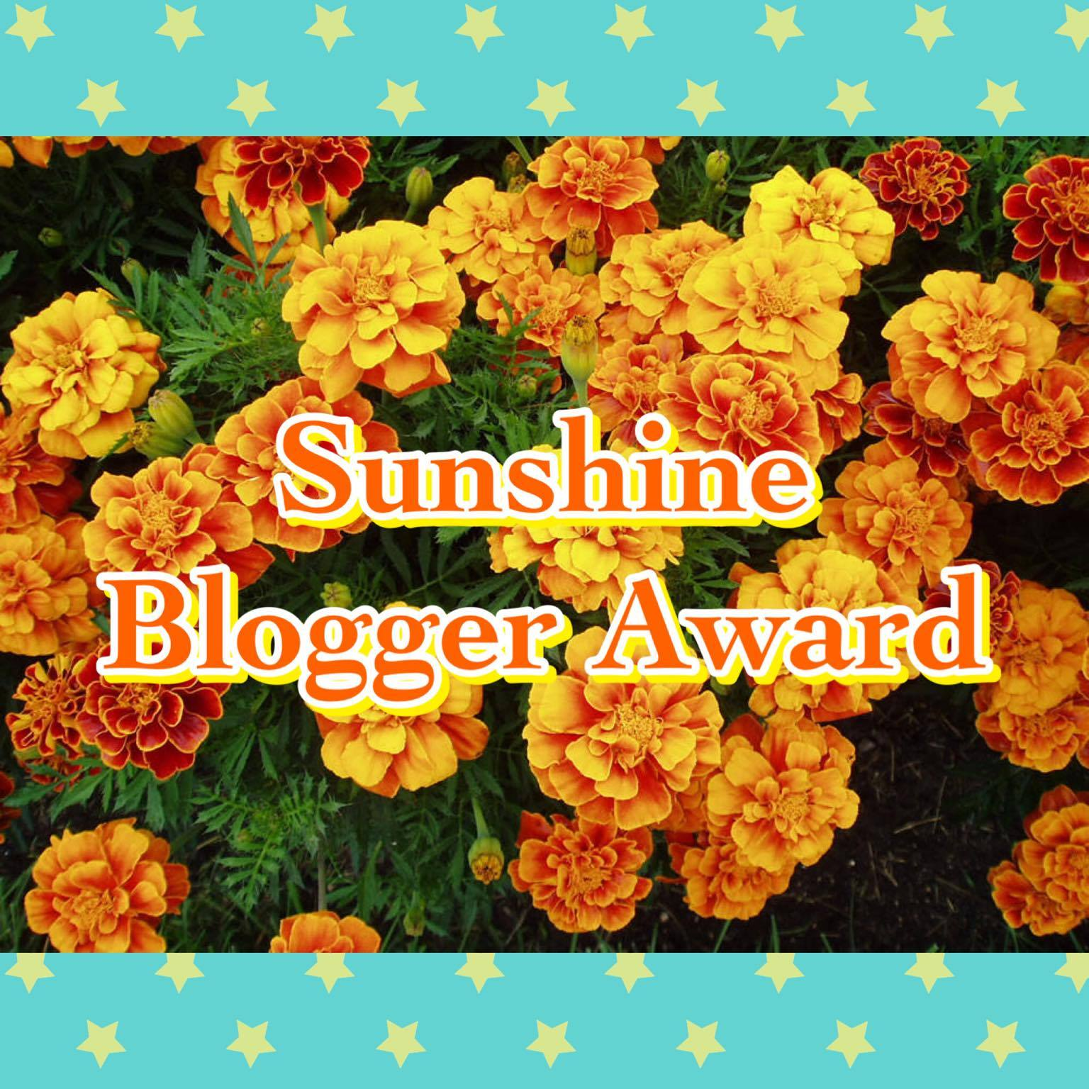 Sunshine Blogger Award (text on a field of marigolds...top and bottom yellow and blue star border)