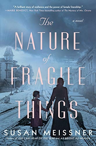 The Nature of Fragile Things by Susan Meissner (cover) Image: blue-toned picture of a woman and young girl holding hands and walking down railroad tracks with backs to camerai