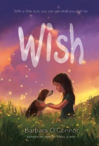Wish by Barbara O'Connor (cover) Image: a young firl sits in a field of wild flowers with a dog