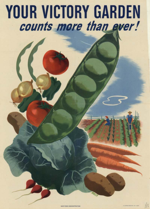 A WW11 flyer promoting Victory Gardens